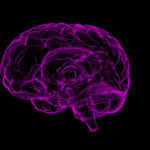 मज्जासंस्थेला येणार वृद्धत्व