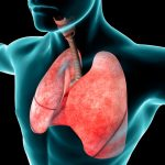 वयानुसार श्वसन प्रणाली वृद्ध होणे