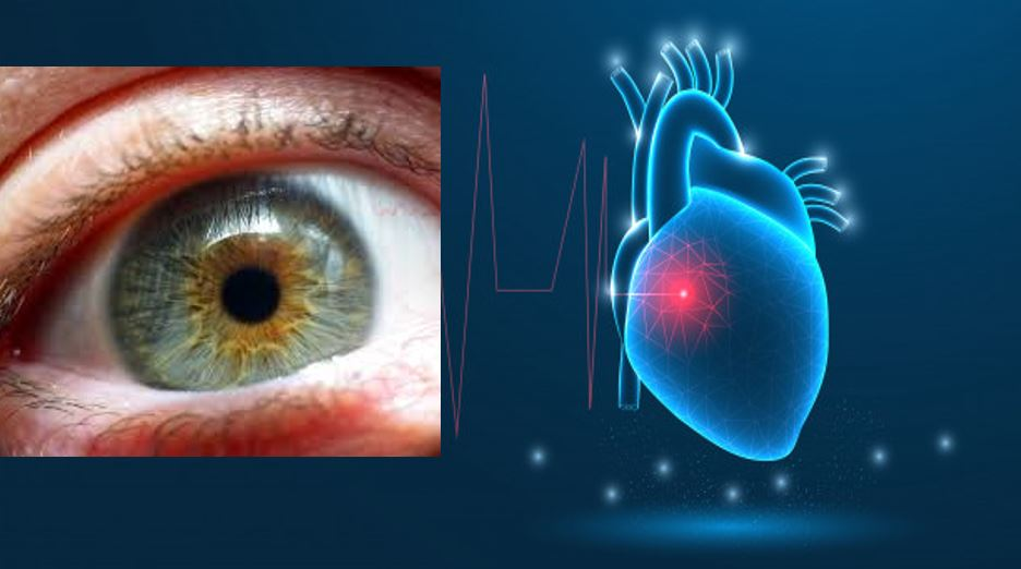 Google AI Eye scan