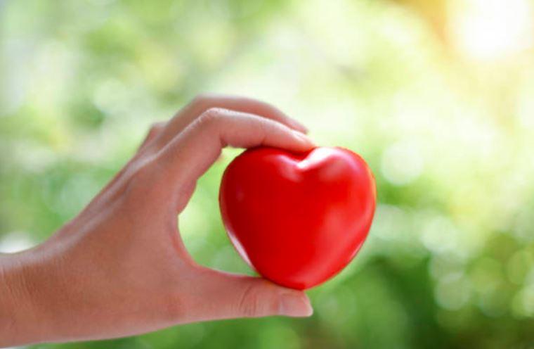 ayurvedic remedies for heart health
