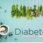 11 natural remedies for older adults to control diabetes